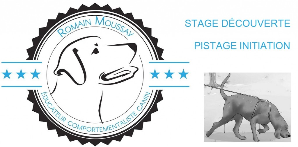 Stage d'initiation Pistage le 14/02/2021